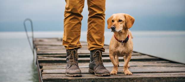 Man and his dog standing on dock