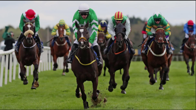 Horse Racing Tips Today | Sydney Racing Tips | The New Sophia